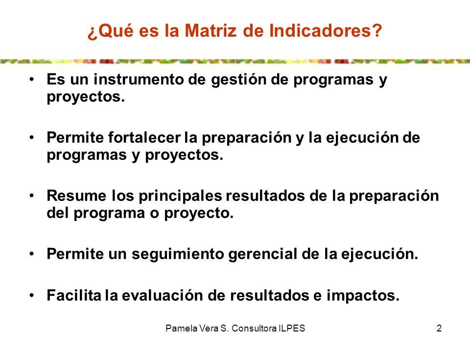 Pamela Vera S. Consultora ILPES2 Es un instrumento de gestión de programas y proyectos. Permite fortalecer la preparación y la ejecución de programas