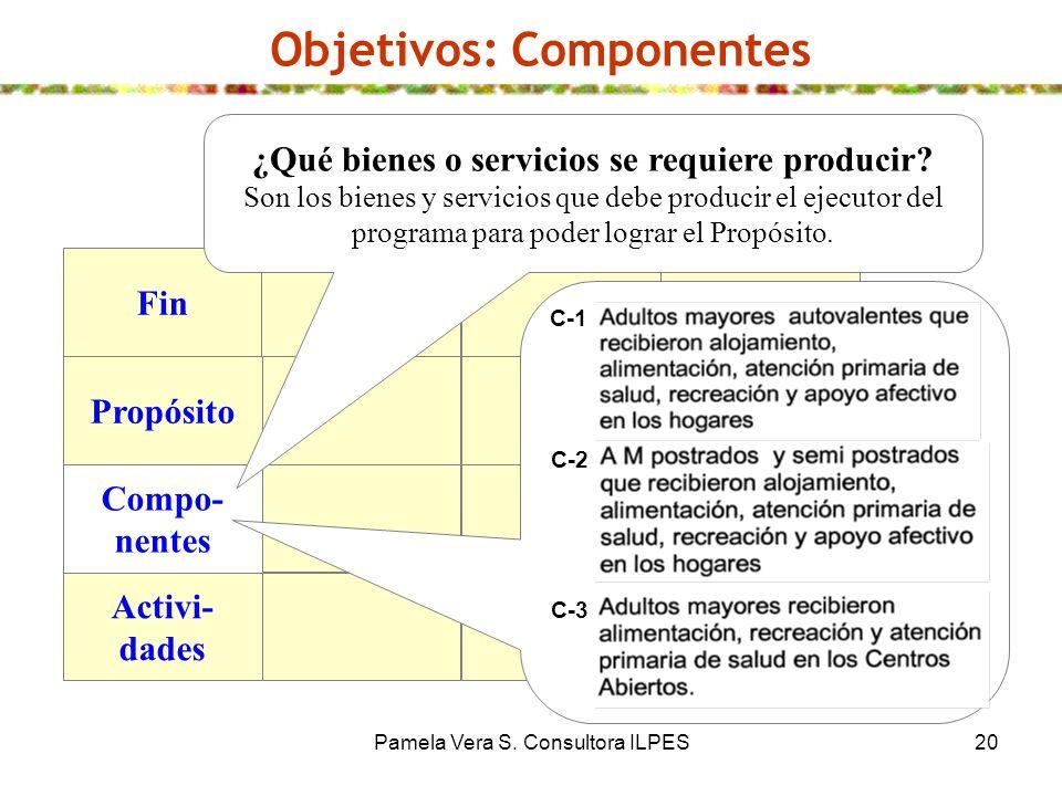 Pamela Vera S. Consultora ILPES20 Objetivos: Componentes Fin Propósito Compo- nentes Activi- dades ¿Qué bienes o servicios se requiere producir? Son l