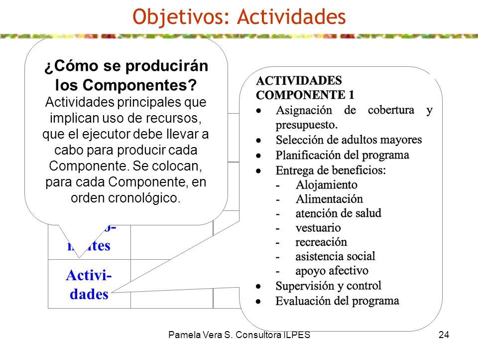 Pamela Vera S. Consultora ILPES24 Objetivos: Actividades Fin Propósito Compo- nentes Activi- dades ¿Cómo se producirán los Componentes? Actividades pr