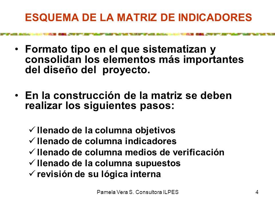 Pamela Vera S. Consultora ILPES4 ESQUEMA DE LA MATRIZ DE INDICADORES Formato tipo en el que sistematizan y consolidan los elementos más importantes de