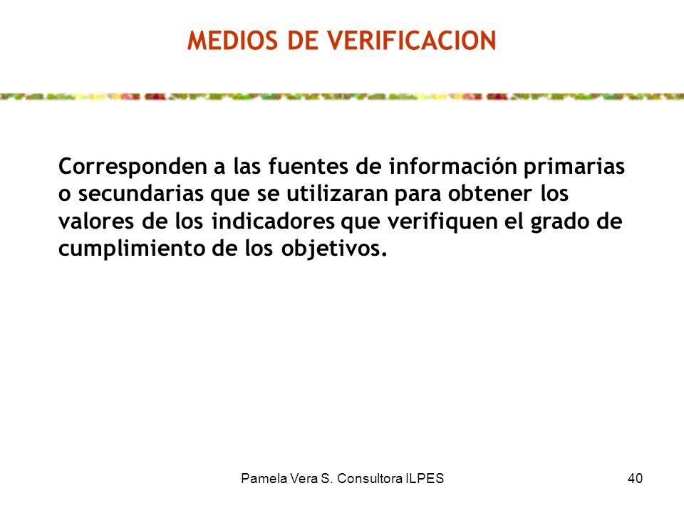 Pamela Vera S. Consultora ILPES40 MEDIOS DE VERIFICACION Corresponden a las fuentes de información primarias o secundarias que se utilizaran para obte