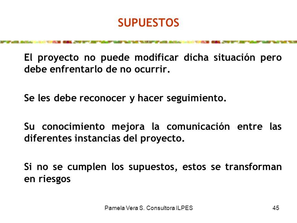 Pamela Vera S. Consultora ILPES45 SUPUESTOS El proyecto no puede modificar dicha situación pero debe enfrentarlo de no ocurrir. Se les debe reconocer