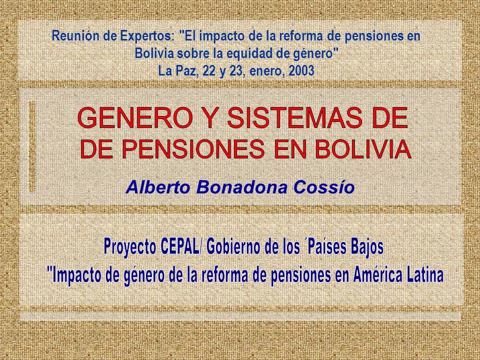 Alberto Bonadona Cossío Reunión de Expertos: