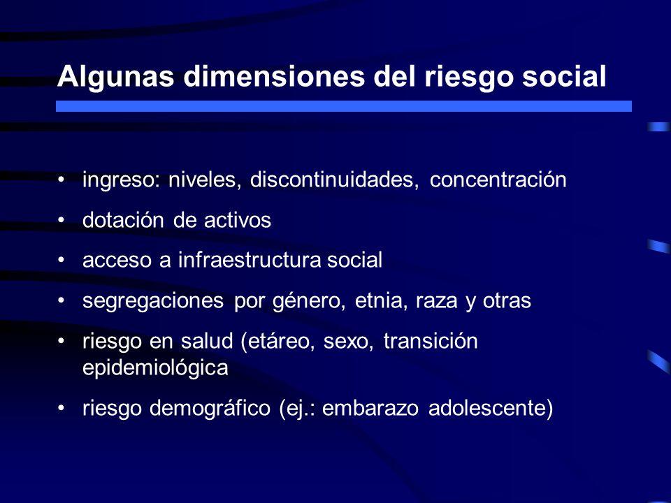 Algunas dimensiones del riesgo social ingreso: niveles, discontinuidades, concentración dotación de activos acceso a infraestructura social segregacio
