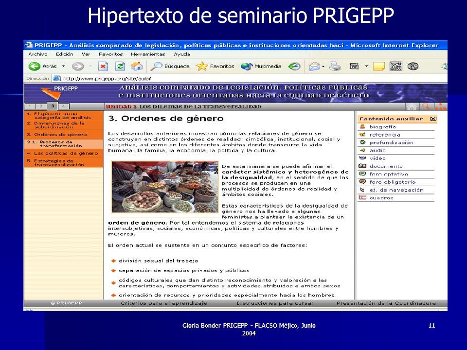 Gloria Bonder PRIGEPP - FLACSO Méjico, Junio 2004 11 Hipertexto de seminario PRIGEPP