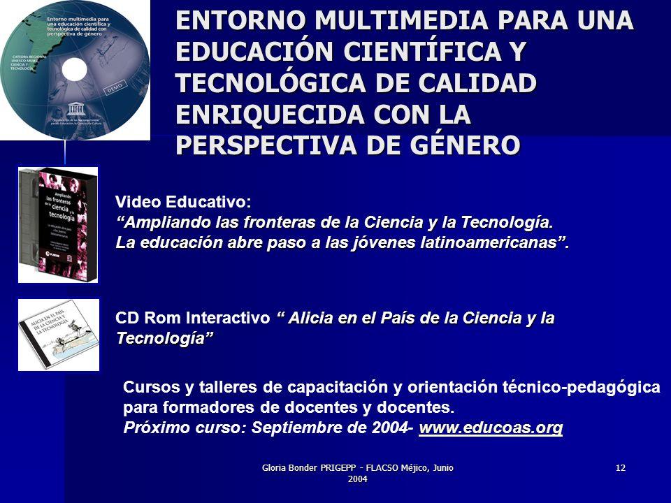 Gloria Bonder PRIGEPP - FLACSO Méjico, Junio 2004 12 Alicia en el País de la Ciencia y la CD Rom Interactivo Alicia en el País de la Ciencia y laTecnología Video Educativo: Ampliando las fronteras de la Ciencia y la Tecnología.
