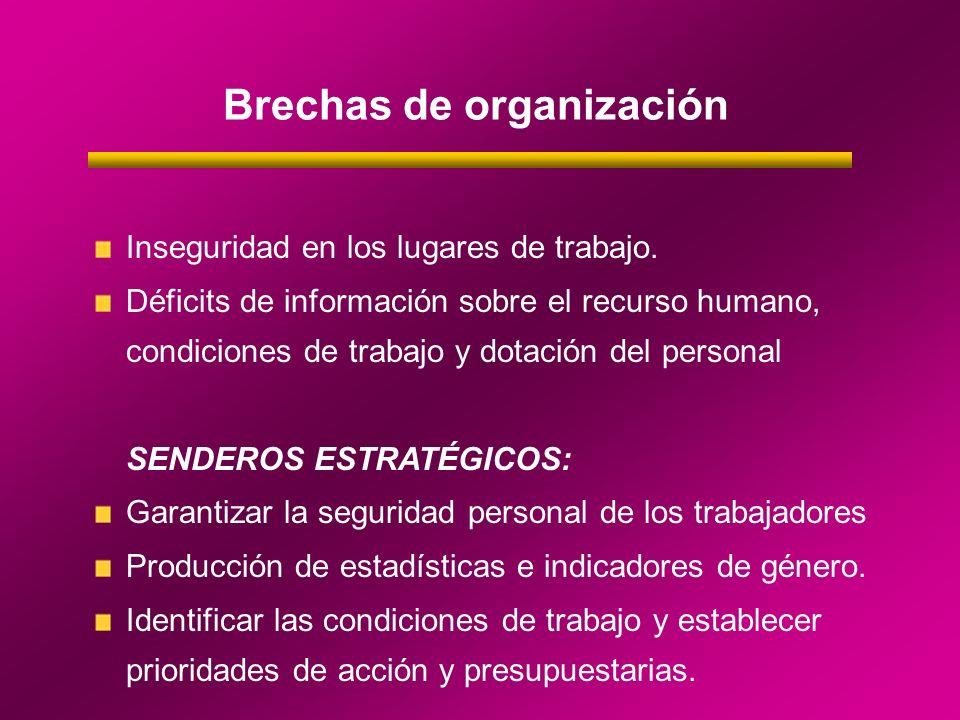 Brechas de organización Inseguridad en los lugares de trabajo. Déficits de información sobre el recurso humano, condiciones de trabajo y dotación del