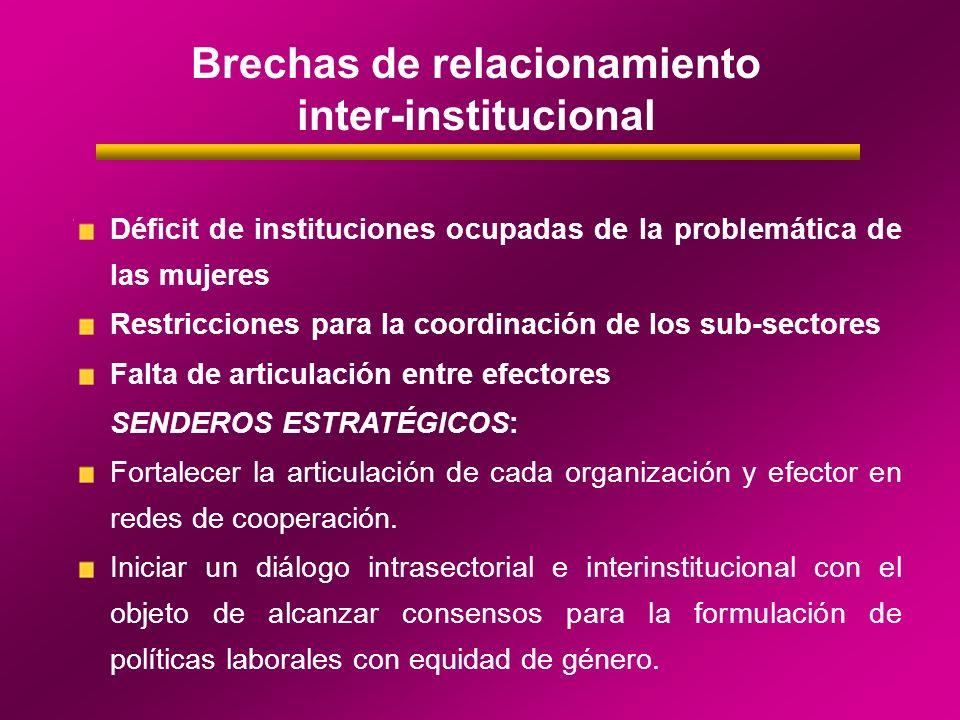 Brechas de relacionamiento inter-institucional Déficit de instituciones ocupadas de la problemática de las mujeres Restricciones para la coordinación