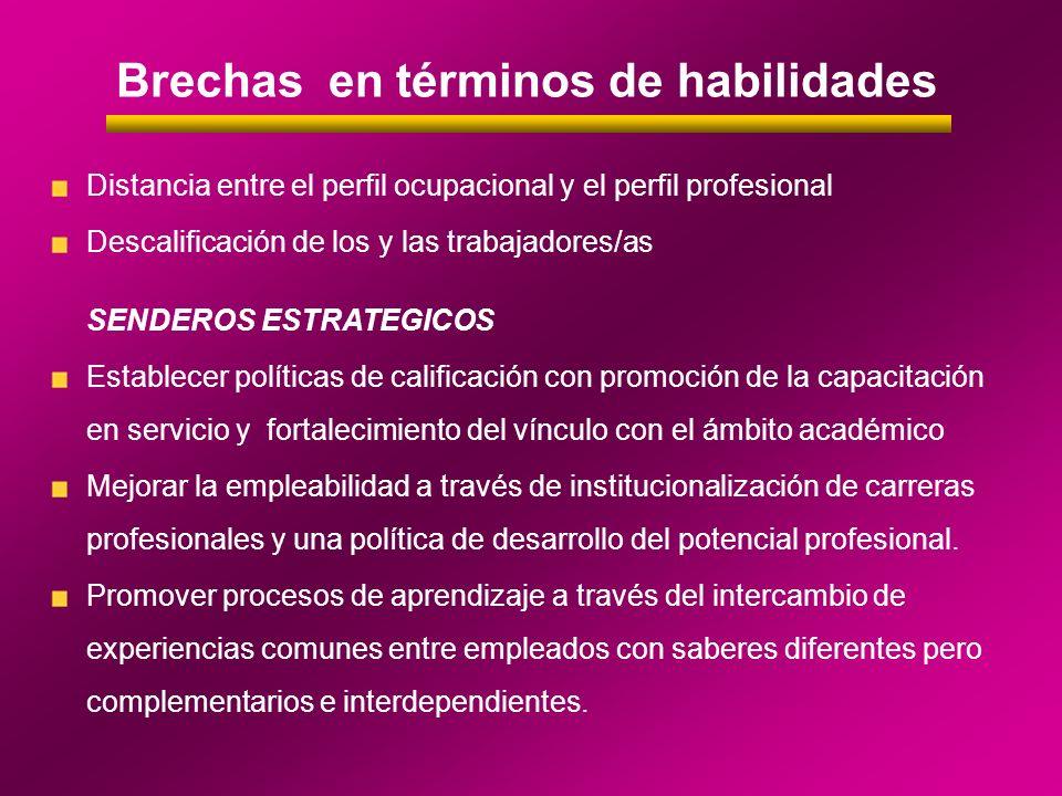 Brechas en términos de habilidades Distancia entre el perfil ocupacional y el perfil profesional Descalificación de los y las trabajadores/as SENDEROS