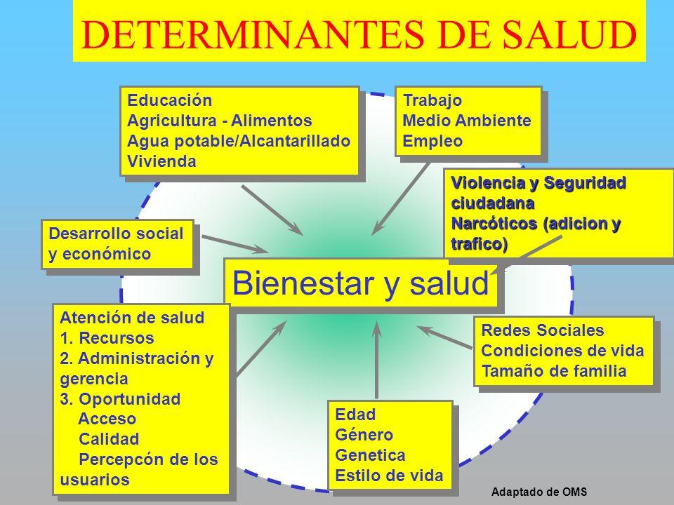 Bienestar y salud Educación Agricultura - Alimentos Agua potable/Alcantarillado Vivienda Educación Agricultura - Alimentos Agua potable/Alcantarillado
