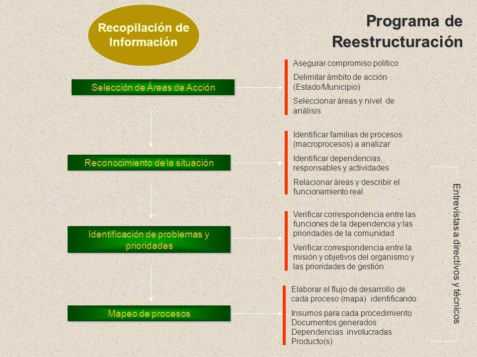 Mapeo de Procesos InsumosProcedimientosProductos Evaluación de capacidades Desarrollo de indicadores Indicadores técnicos Indicadores Administrativos