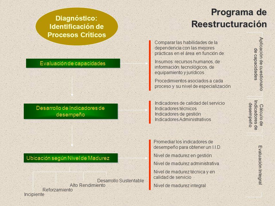 Programa de Reestructuración Reconocimiento de la situación Identificar familias de procesos (macroprocesos) a analizar Identificar dependencias, resp