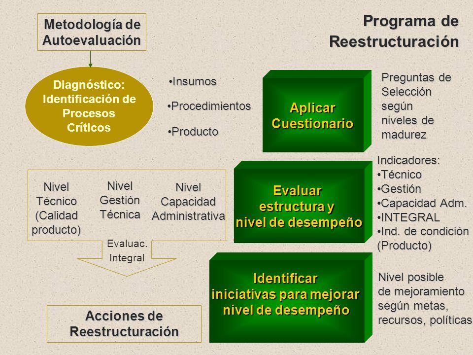 Area Funcional: Mantenimiento Vial Objetivos Conocer el nivel actual de desempeño Evaluar : Identificar procesos críticos Identificar áreas de mejora
