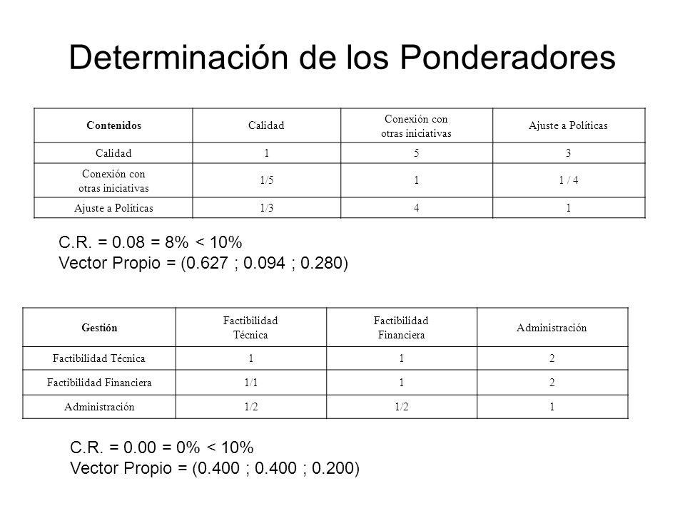 Determinación de los Ponderadores ContenidosCalidad Conexión con otras iniciativas Ajuste a Políticas Calidad153 Conexión con otras iniciativas 1/511