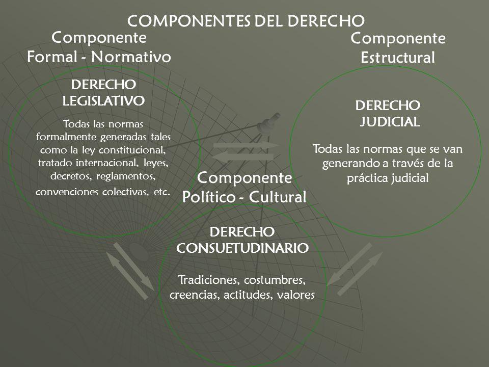 DERECHO DE FAMILIA PATRIARCAL En algunos países sigue siendo parte del Derecho Civil y no una rama aparte del derecho.