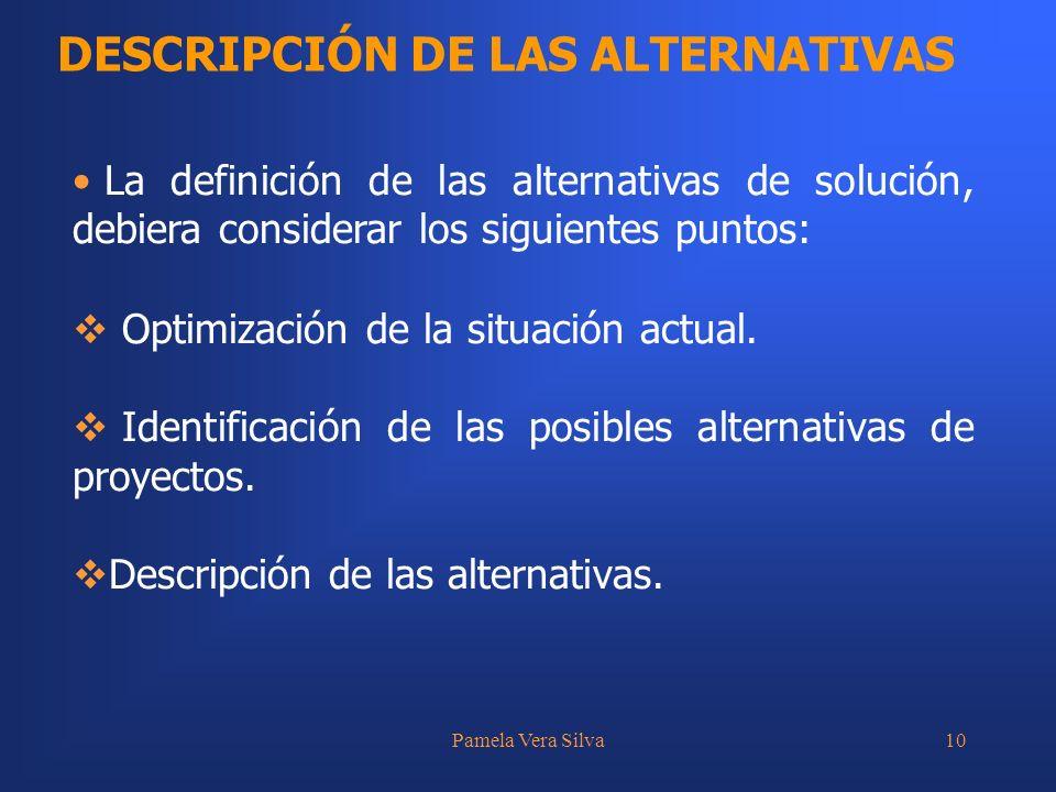 Pamela Vera Silva10 DESCRIPCIÓN DE LAS ALTERNATIVAS La definición de las alternativas de solución, debiera considerar los siguientes puntos: Optimizac