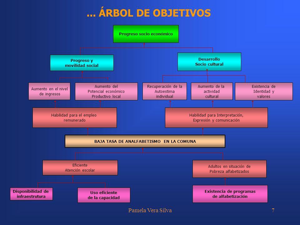 Pamela Vera Silva7... ÁRBOL DE OBJETIVOS Habilidad para el empleo remunerado Habilidad para Interpretación, Expresión y comunicación BAJA TASA DE ANAL