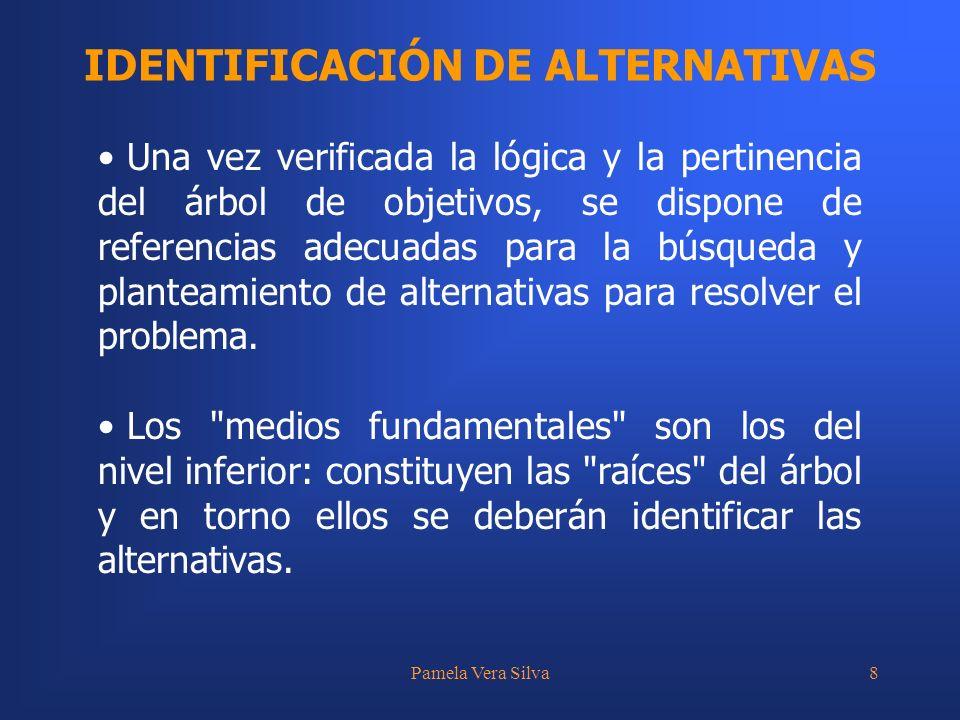 Pamela Vera Silva8 IDENTIFICACIÓN DE ALTERNATIVAS Una vez verificada la lógica y la pertinencia del árbol de objetivos, se dispone de referencias adecuadas para la búsqueda y planteamiento de alternativas para resolver el problema.