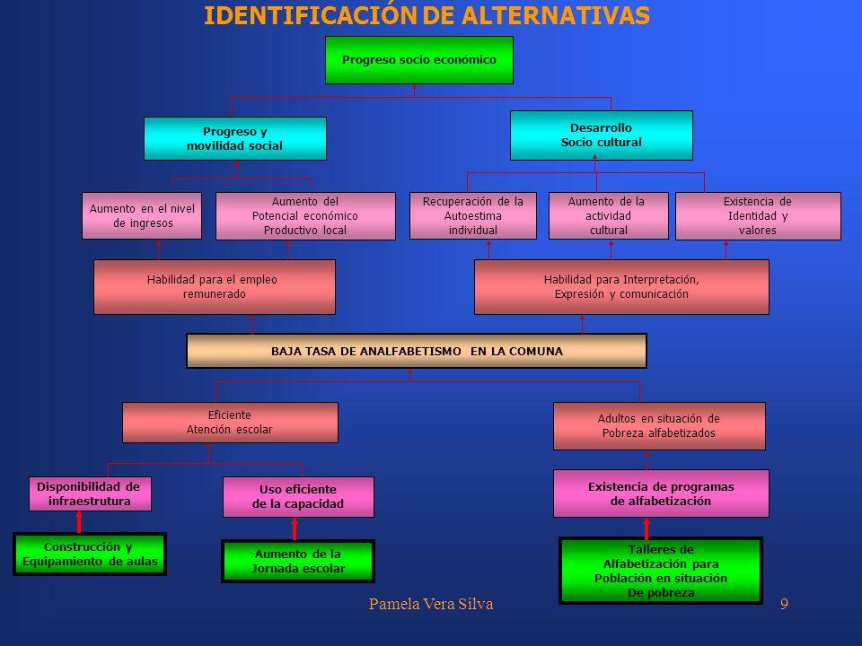 Pamela Vera Silva10 DESCRIPCIÓN DE LAS ALTERNATIVAS La definición de las alternativas de solución, debiera considerar los siguientes puntos: Optimización de la situación actual.