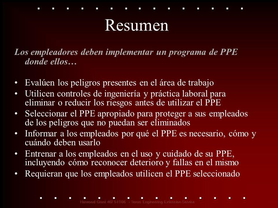 Resumen Los empleadores deben implementar un programa de PPE donde ellos… Evalúen los peligros presentes en el área de trabajo Utilicen controles de i