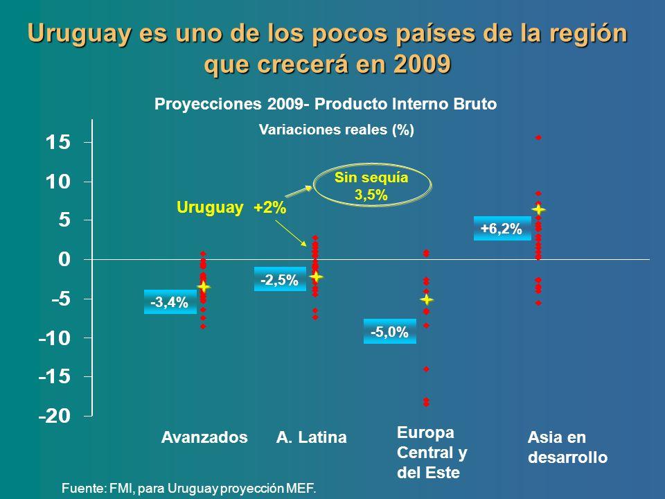 Uruguay es uno de los pocos países de la región que crecerá en 2009 Proyecciones 2009- Producto Interno Bruto Variaciones reales (%) Fuente: FMI, para