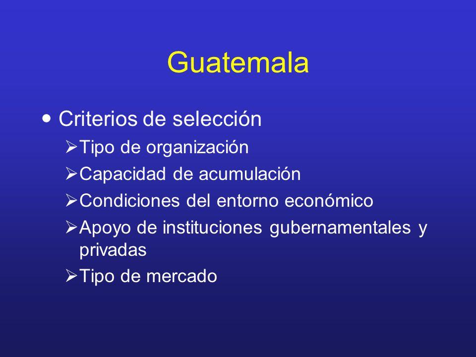 Guatemala Criterios de selección Tipo de organización Capacidad de acumulación Condiciones del entorno económico Apoyo de instituciones gubernamentale