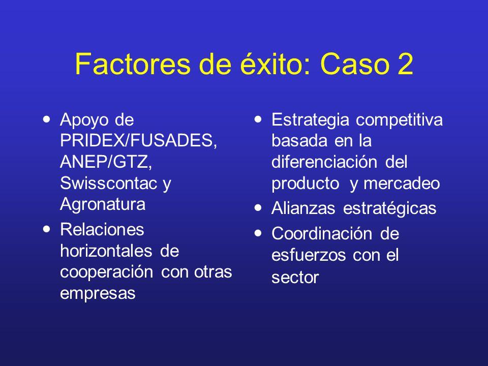 Factores de éxito: Caso 2 Apoyo de PRIDEX/FUSADES, ANEP/GTZ, Swisscontac y Agronatura Relaciones horizontales de cooperación con otras empresas Estrat