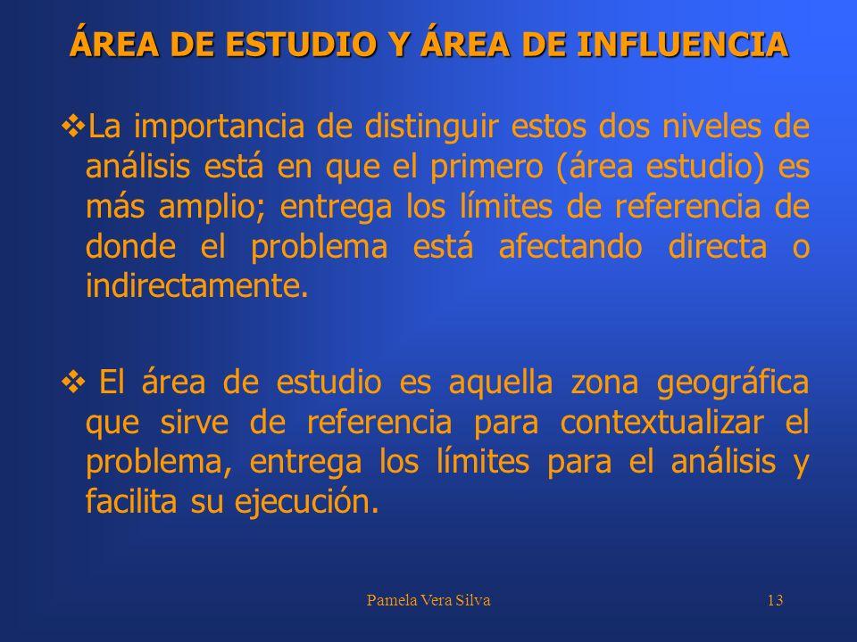 Pamela Vera Silva13 ÁREA DE ESTUDIO Y ÁREA DE INFLUENCIA La importancia de distinguir estos dos niveles de análisis está en que el primero (área estud