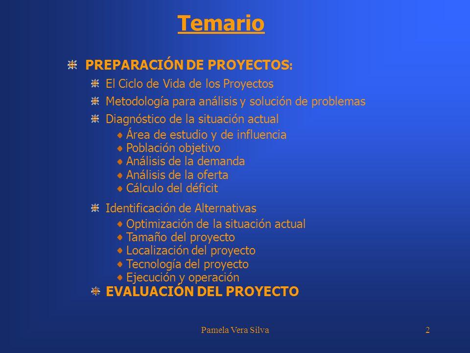 Pamela Vera Silva3 ELEMENTOS DEL DIAGNÓSTICO PROBLEMA ÁREA DE ESTUDIO ÁREA DE INFLUENCIA POBLACIÓN DEFICIT (DETERMINACION OFERTA Y DDA)