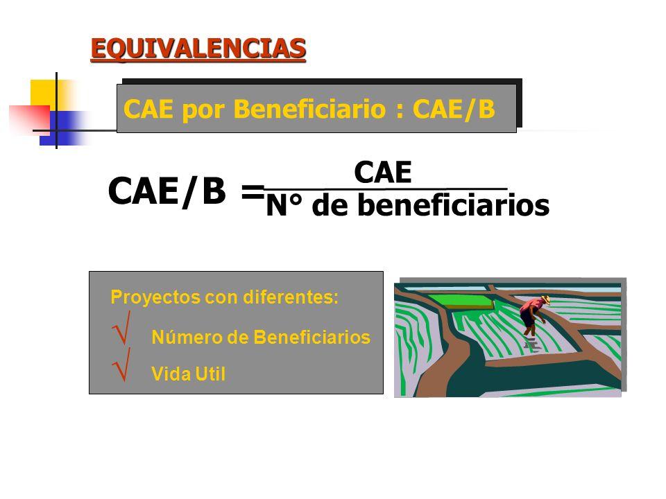 EQUIVALENCIAS COSTO ANUAL EQUIVALENTE = CAE VPC = Valor Actual de los Costos VPCCAE = (1 + r) n r n - 1