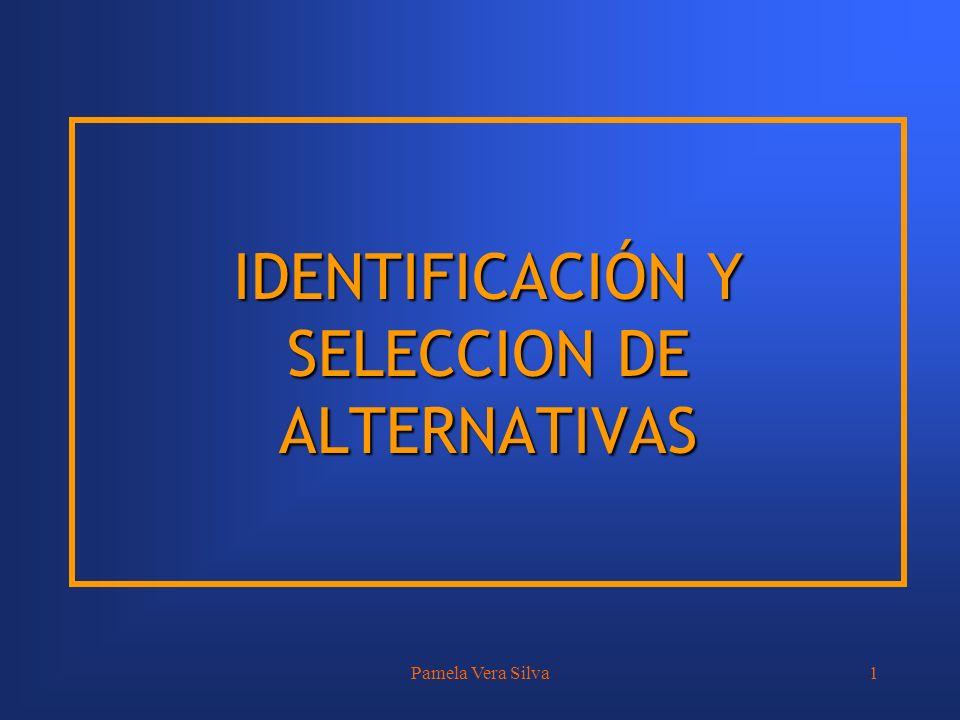 Pamela Vera Silva1 IDENTIFICACIÓN Y SELECCION DE ALTERNATIVAS