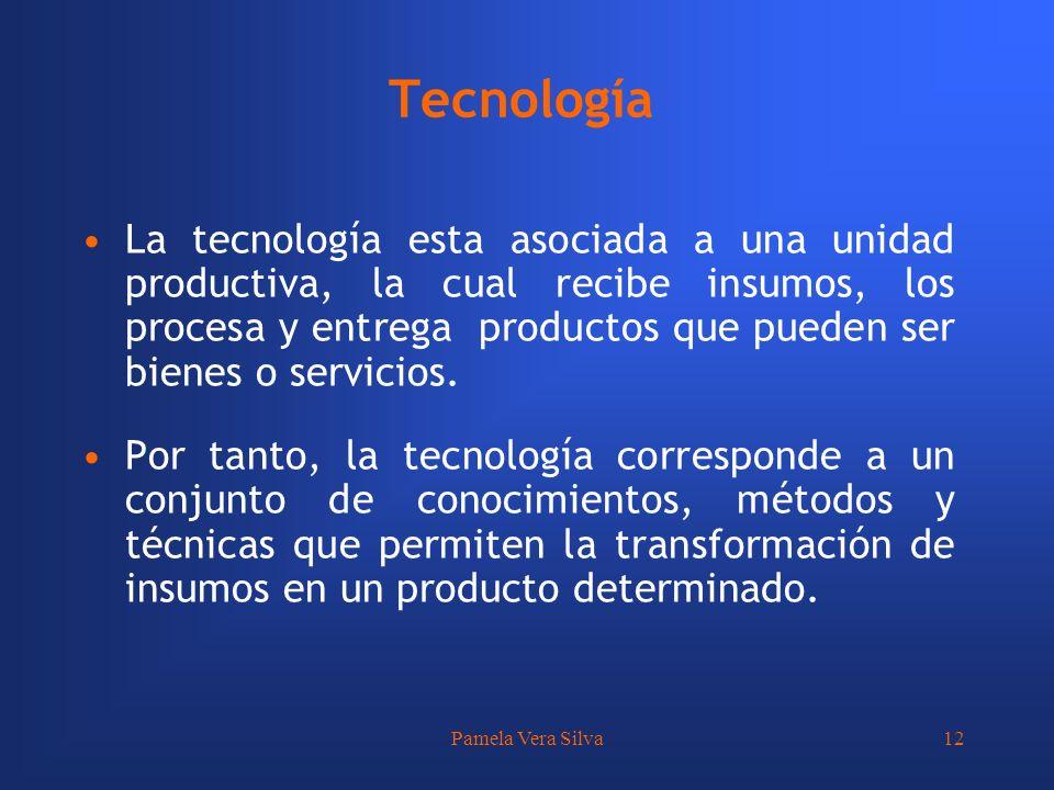 Pamela Vera Silva12 Tecnología La tecnología esta asociada a una unidad productiva, la cual recibe insumos, los procesa y entrega productos que pueden