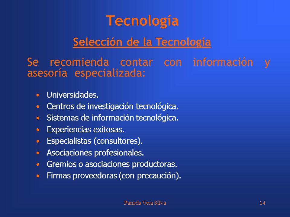 Pamela Vera Silva14 Tecnología Selección de la Tecnología Se recomienda contar con información y asesoría especializada: Universidades. Centros de inv