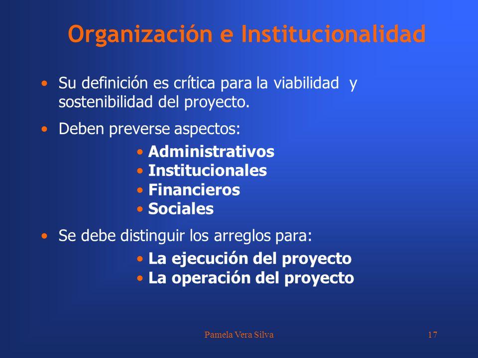 Pamela Vera Silva17 Organización e Institucionalidad Su definición es crítica para la viabilidad y sostenibilidad del proyecto. Deben preverse aspecto