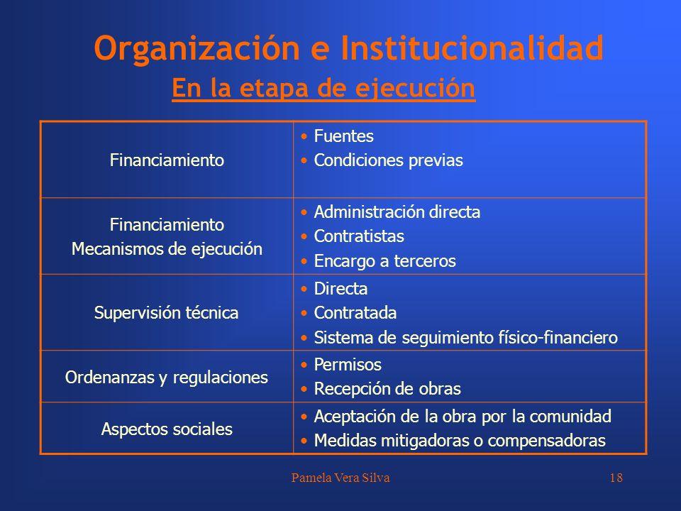 Pamela Vera Silva18 Organización e Institucionalidad En la etapa de ejecución Financiamiento Fuentes Condiciones previas Financiamiento Mecanismos de