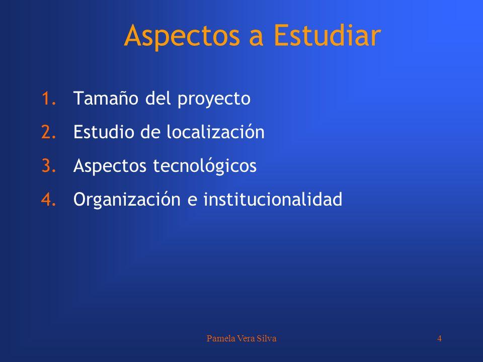 Pamela Vera Silva4 Aspectos a Estudiar 1.Tamaño del proyecto 2.Estudio de localización 3.Aspectos tecnológicos 4.Organización e institucionalidad