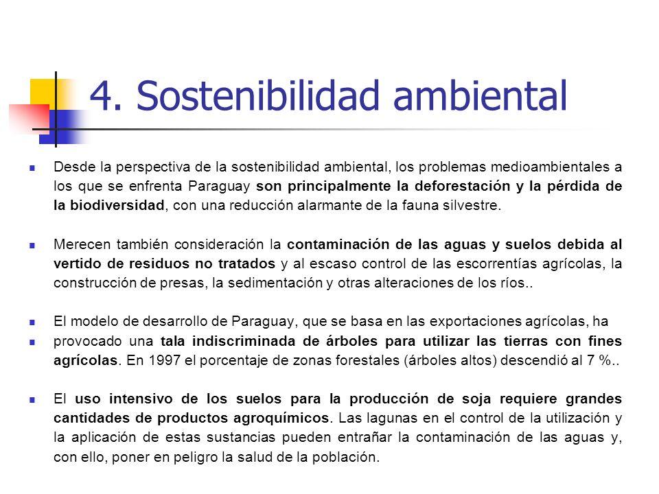 Desde la perspectiva de la sostenibilidad ambiental, los problemas medioambientales a los que se enfrenta Paraguay son principalmente la deforestación