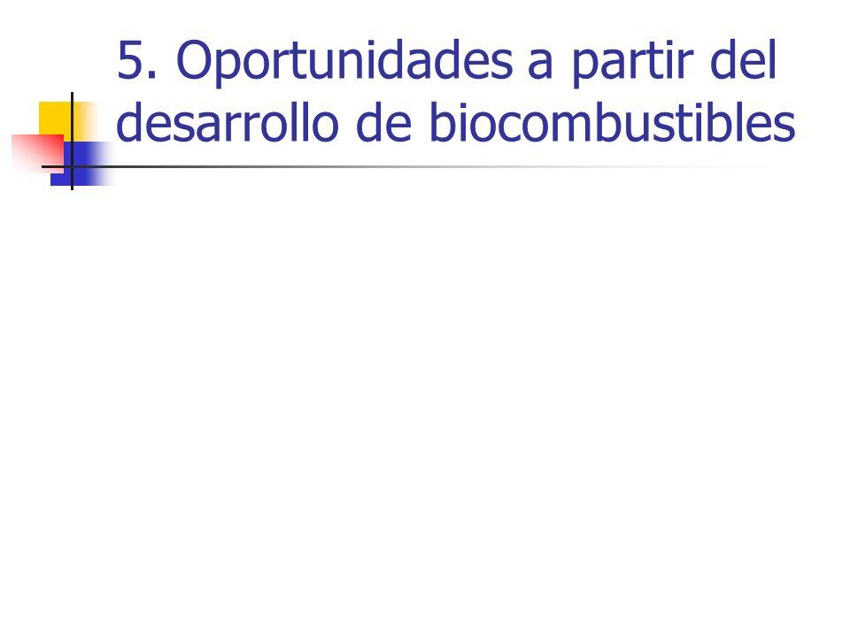 5. Oportunidades a partir del desarrollo de biocombustibles