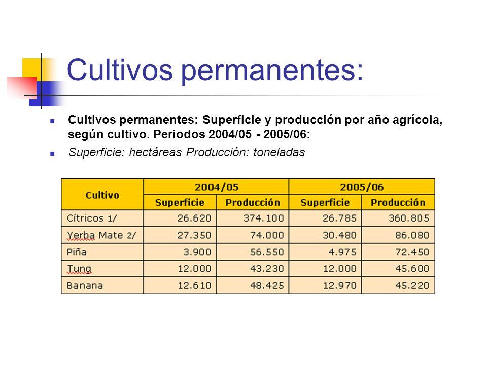 Cultivos permanentes: Cultivos permanentes: Superficie y producción por año agrícola, según cultivo. Periodos 2004/05 - 2005/06: Superficie: hectáreas