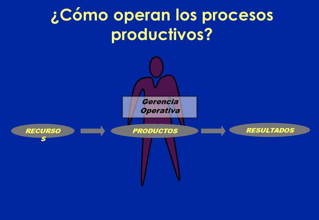 RESULTADOS Gerencia Operativa ¿Cómo operan los procesos productivos? PRODUCTOSRECURSO S