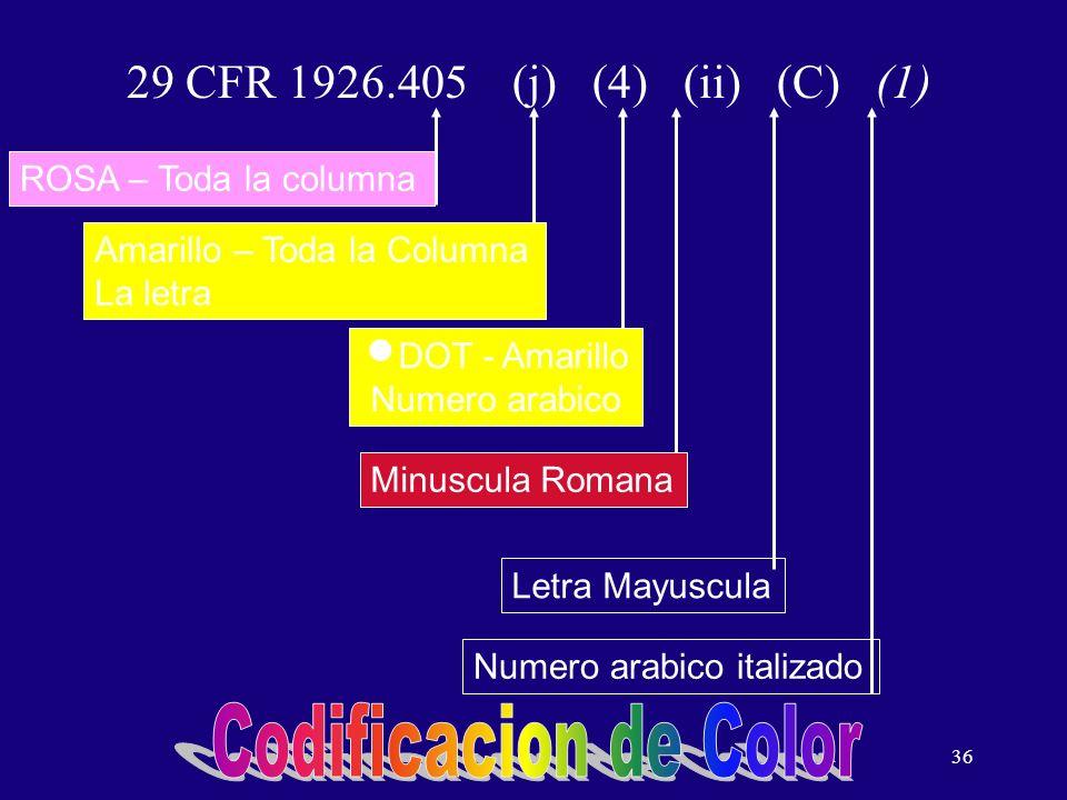 36 29 CFR 1926.405 (j) (4) (ii) (C) (1) Amarillo – Toda la Columna La letra Numero arabico italizado Letra Mayuscula Minuscula Romana DOT - Amarillo Numero arabico ROSA – Toda la columna