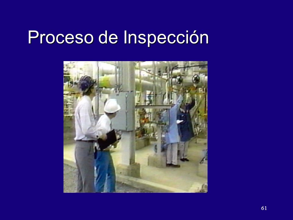 61 Proceso de Inspección