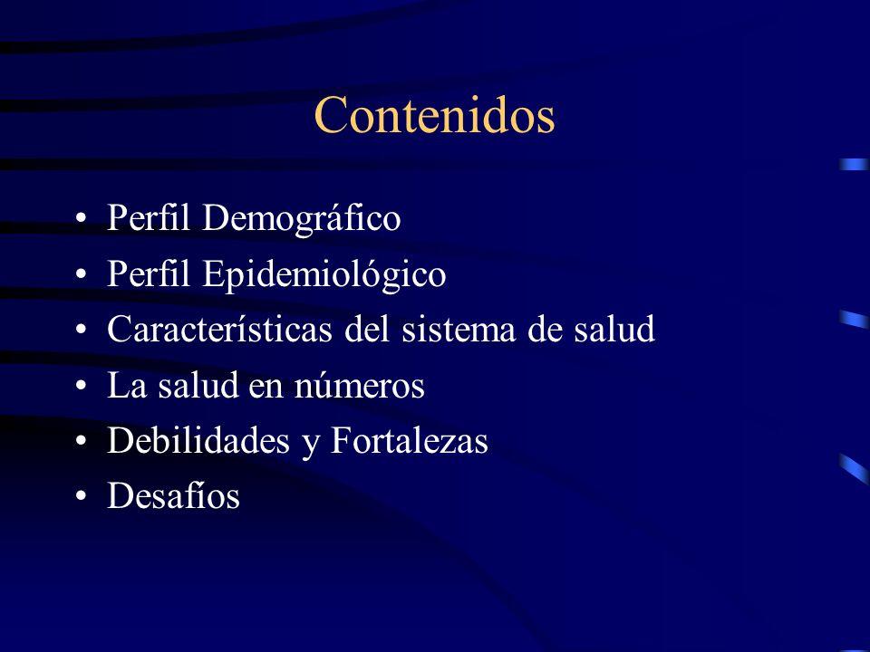 Contenidos Perfil Demográfico Perfil Epidemiológico Características del sistema de salud La salud en números Debilidades y Fortalezas Desafíos