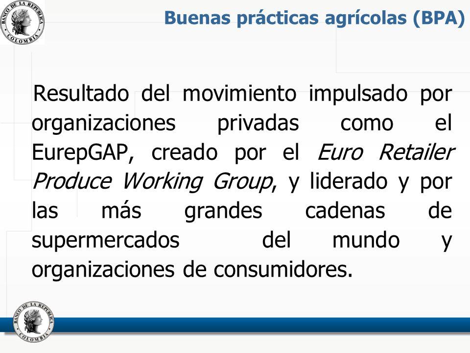 Buenas prácticas agrícolas (BPA) Resultado del movimiento impulsado por organizaciones privadas como el EurepGAP, creado por el Euro Retailer Produce Working Group, y liderado y por las más grandes cadenas de supermercados del mundo y organizaciones de consumidores.