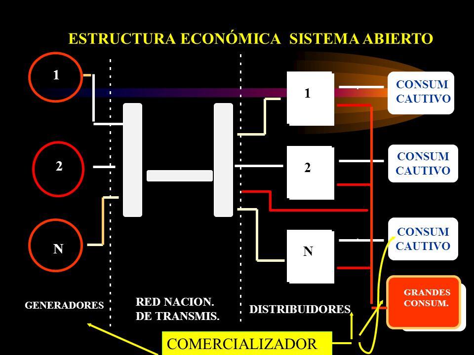 ESTRUCTURA ECONÓMICA SISTEMA ABIERTO 1 N GENERADORES RED NACION.