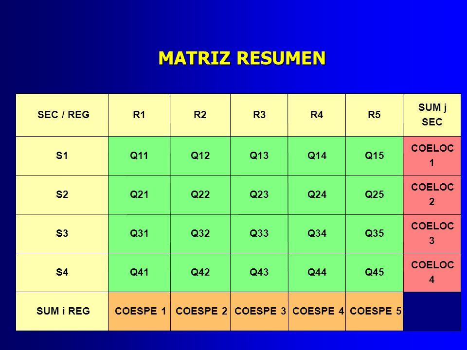 MATRIZ RESUMEN