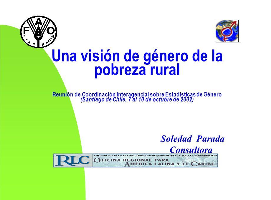 Una visión de género de la pobreza rural Reunión de Coordinación Interagencial sobre Estadísticas de Género (Santiago de Chile, 7 al 10 de octubre de