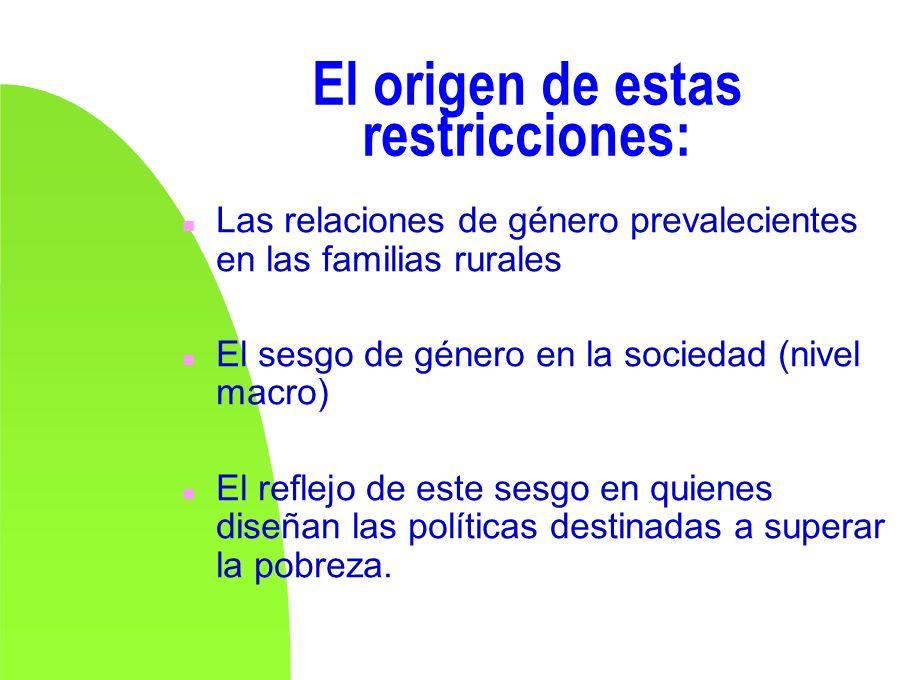 El origen de estas restricciones: n Las relaciones de género prevalecientes en las familias rurales n El sesgo de género en la sociedad (nivel macro)