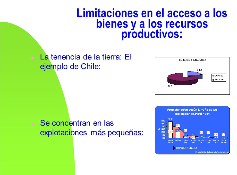 Limitaciones en el acceso a los bienes y a los recursos productivos: n La tenencia de la tierra: El ejemplo de Chile: n Se concentran en las explotaci
