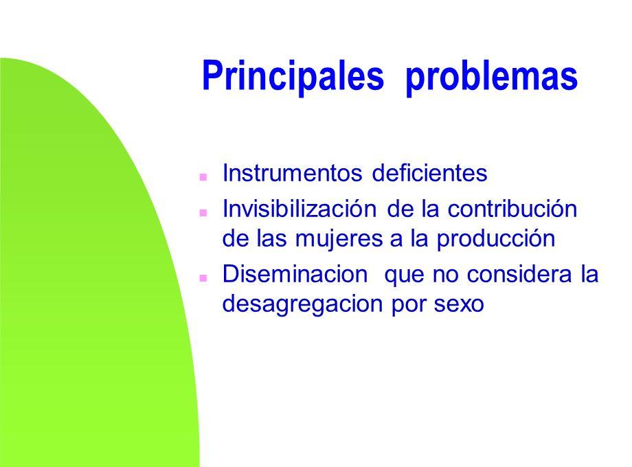 Principales problemas n Instrumentos deficientes n Invisibilización de la contribución de las mujeres a la producción n Diseminacion que no considera